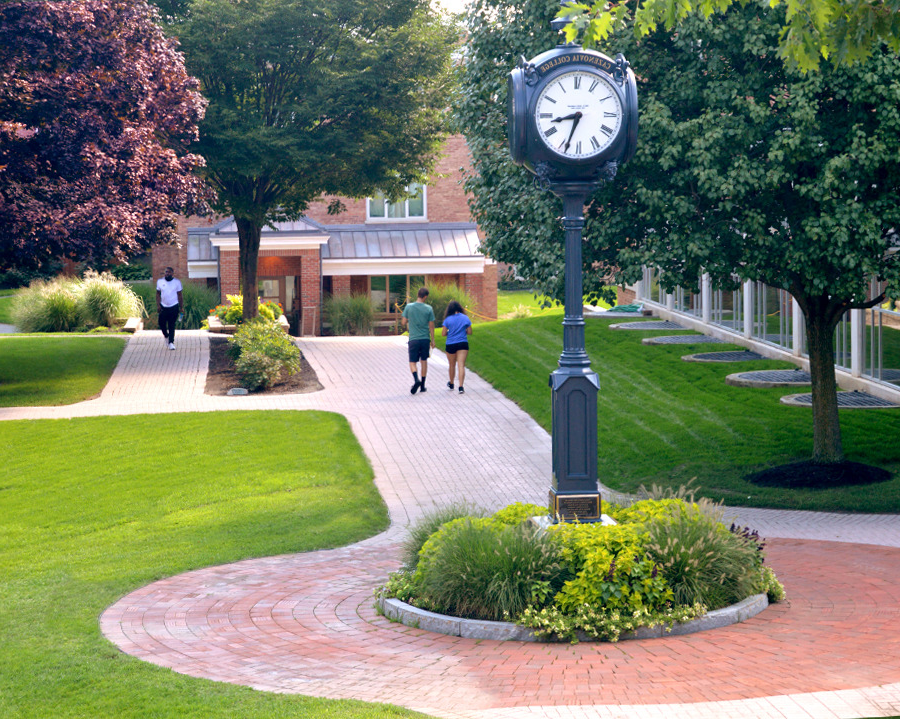 The Quad in the Summer